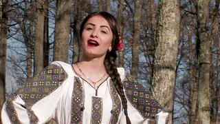 Sandica Dochiu  - Vino neiculita