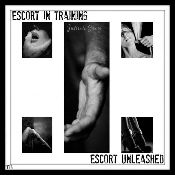 Escort in Training Emma Book 1 - James Grey