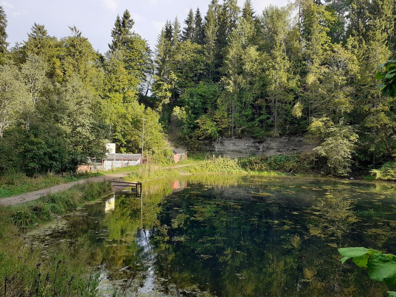 ИЗУЧАЕМ КРАСОТЫ ЛЕНИНГРАДСКОЙ ОБЛАСТИ. Прозрачное родниковое озеро возле Хвойног...