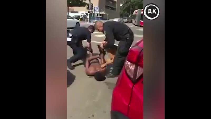 Собака покусала негра в наручниках Дерзкий Квадрат