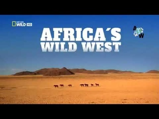 Best Documentary | Wild Africa | National Geographic | Nat Geo Wild