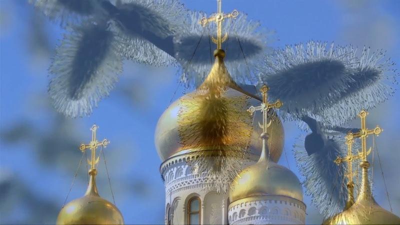 Вербное воскресенье C праздником друзья Храни вас Бог