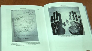 Голод, банды и местный Бендер: вышла книга о криминальном мире Царицына 1920-х годов