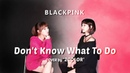 BLACKPINK Don't Know What To Do Cover By 2COLOR Flute Violin 블랙핑크 커버연주