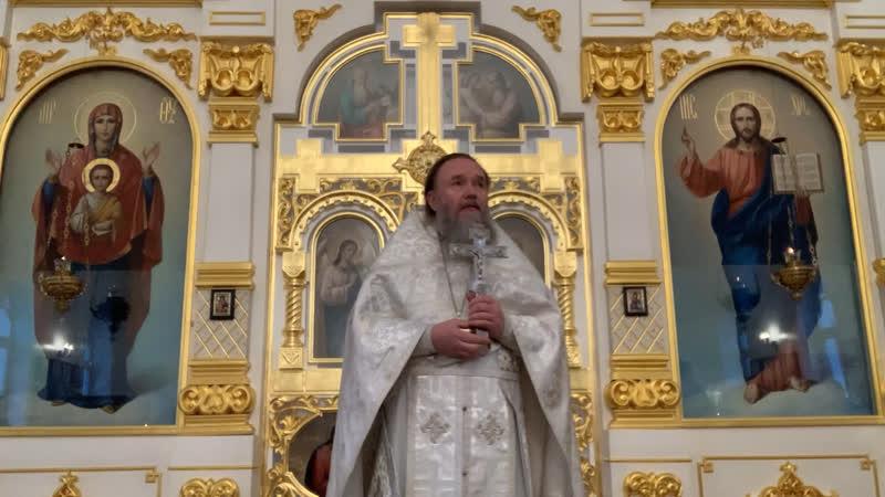 Проповедь настоятеля храма Вознесения Господня г Колпино протоиерея Серафима в Неделю 33 ю по Пятидесятнице