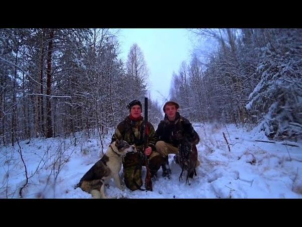 Удачная охота по глухарю Охота с лайкой С братом на охоте Обзор нового ножа