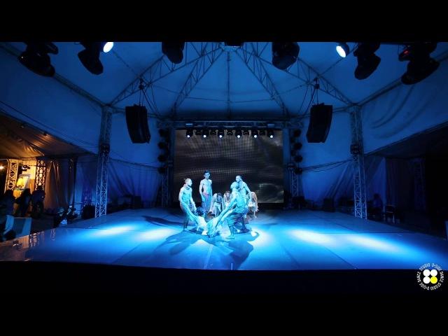 Confidence Pour Confidence Schultheis choreography D'Arts Dance Project dance studio