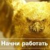 Галина Πолагина