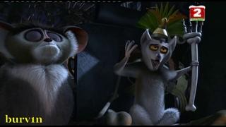 Фрагмент HD / Мадагаскар (2005) - Первое совещание у короля Джулиана / Madagascar Мультфильм Мультик