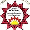 Балканская Академия (Черногория-Россия)