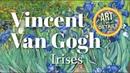 Vincent Van Gogh - Irises 1889