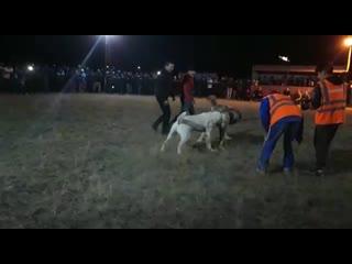 Охламон- Астана  Аккуш - Актобе