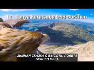 Зимняя сказка с высоты полета Белого Орла. №994