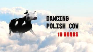 Dancing Polish Cow 10 Hours