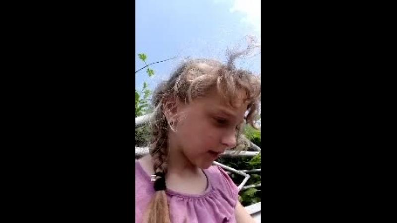 Оксанка Сенишин Live