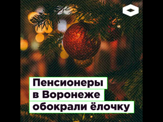В Воронеже пенсионеры украли игрушки с городской елки  | ROMB