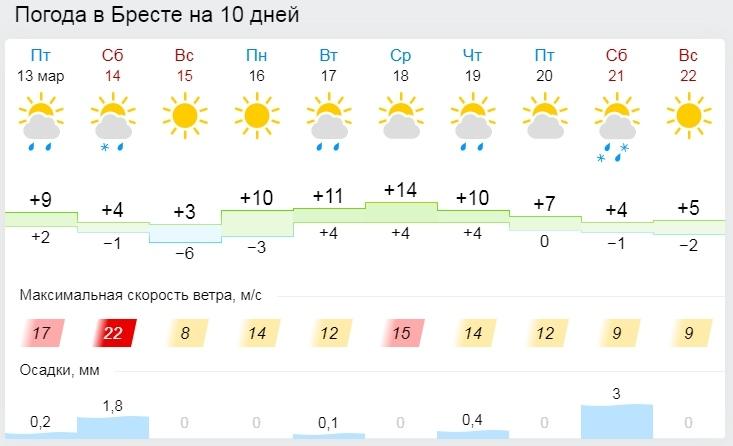 Пока, весна! В выходные в Бресте обещают снег и метель