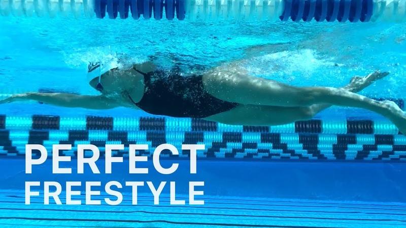 How To Swim Perfect Freestyle | Whiteboard Wednesday