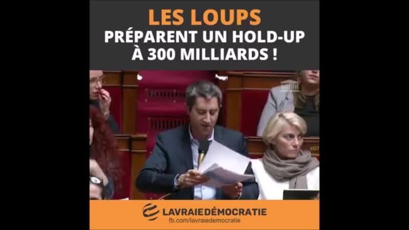 France et réforme des retraites C'est le loup qui promet de devenir végétarien