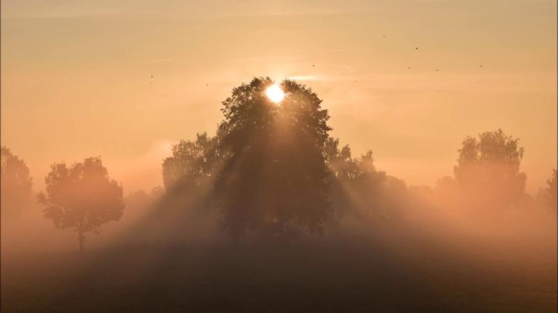 Gravitation Gedanken und Fragen im Nebel