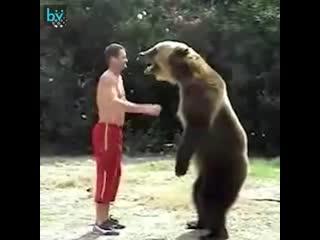 Прикольные животные -