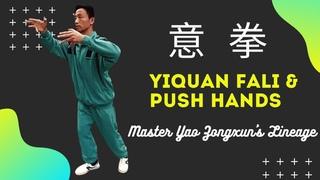 Yiquan Fali & Push Hands Footage #yiquan #dachengquan #yaozongxun