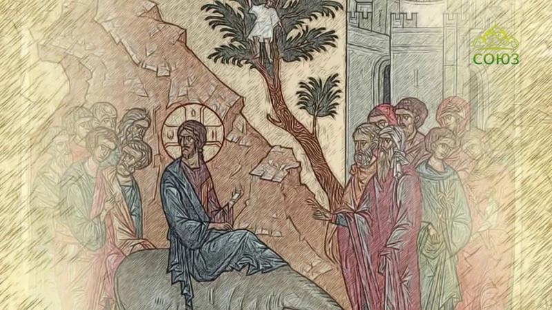 Мульткалендарь 21 апреля 2019 Вербное воскресенье
