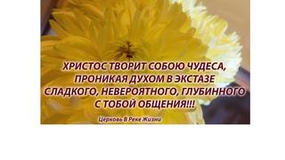 Почему не хватает веры.  ст.пастор Людмила Мастерова Церковь В Реке Жизни
