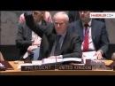 BM Güvenlik Konseyi IŞİD Tasarısını Kabul Etti