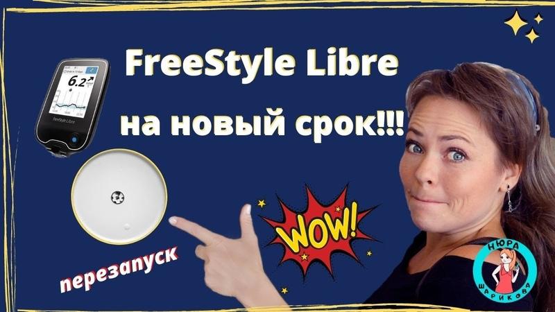 Как перезапустить сенсор Freestyle Libre на новый срок Freestyle libre restart for a new term