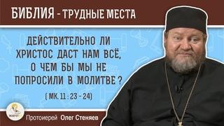 Действительно ли Христос даст нам всё, о чем бы мы не попросили в молитве? (Мк.11:23) о.Олег Стеняев