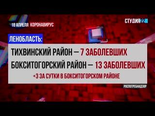 Коронавирус: информация по Бокситогорскому району на 18 апреля