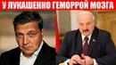 Невзоров уничтожил Лукашенко Клоун, идиот, придурок, таракан, психопат Протесты в Беларуси