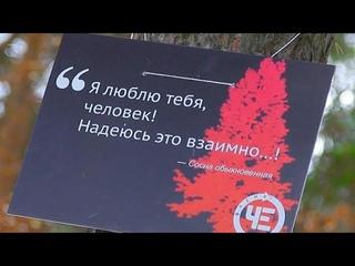 Субботние прогулки   Народный сход эко активистов.
