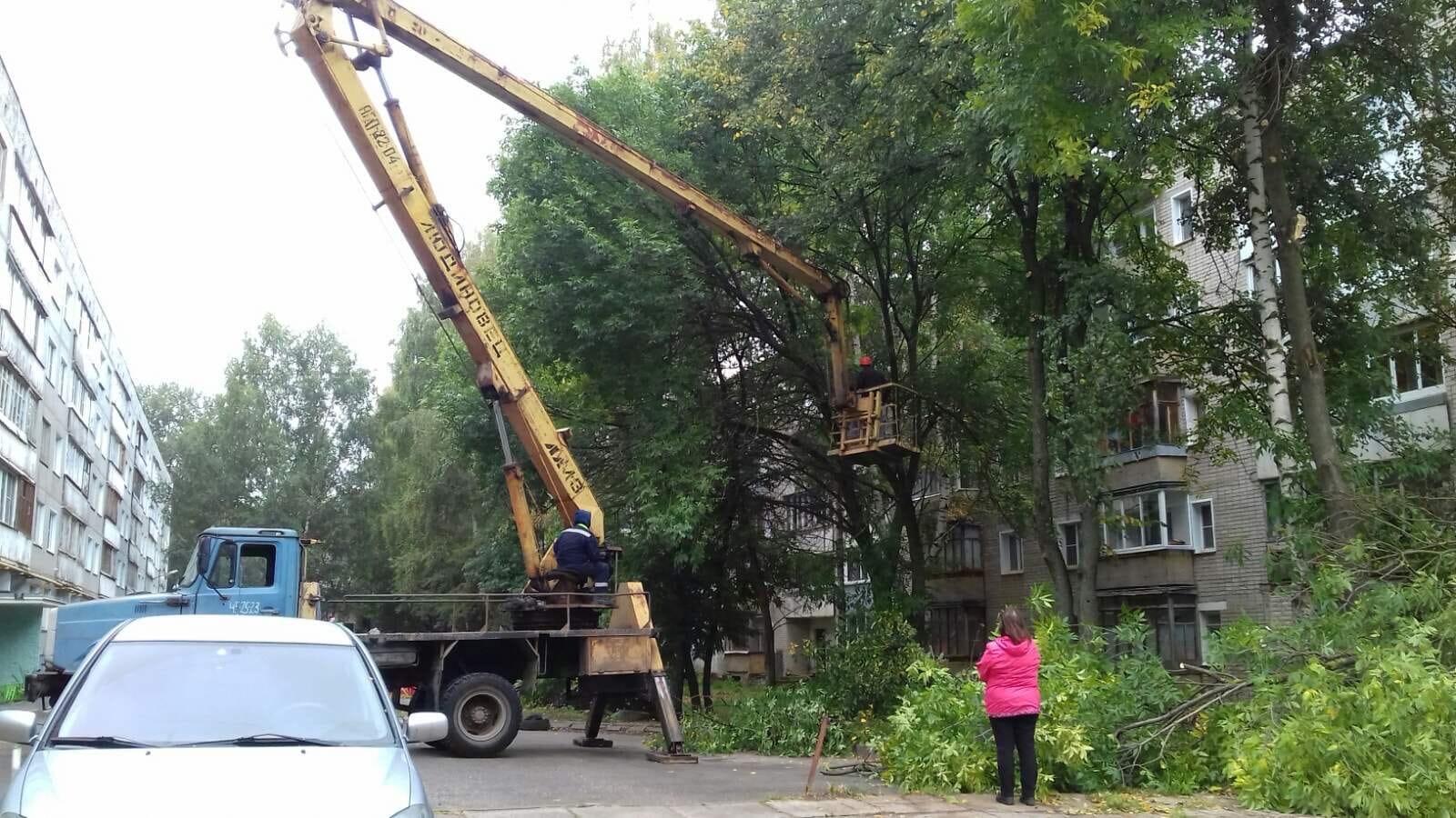 Улица Московская дом 173. Снос и обрезка