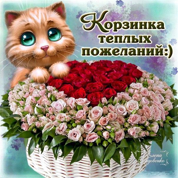 вообще люблю самые красивые и искренние поздравления начинается карлов