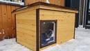 Спасение Собаки Умная Будка для Собаки за 3 дня