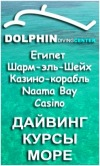"Dolphin Diving Center (Дайвинг-центр ""Дельфин"")"