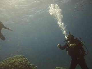 My Diving in Red Sea 2