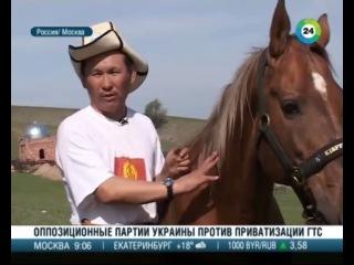 Turkmenistanda bedew bayramy