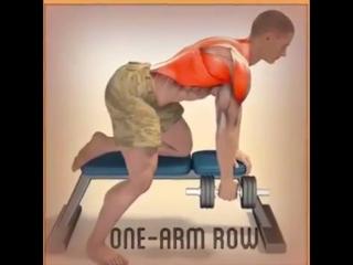 упражнений для всего тела