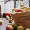 Семейная «Ярмарка урожая» в Новой Охте