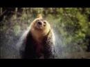 Discovery Северная Америка 2013 ТВ ролик film 774107