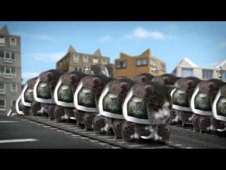 Cyriak - Welcome to Kitty City