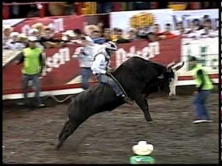 El Chirriche en las Fiestas de Zapote 2010-2011 [Fiestas Zapote]