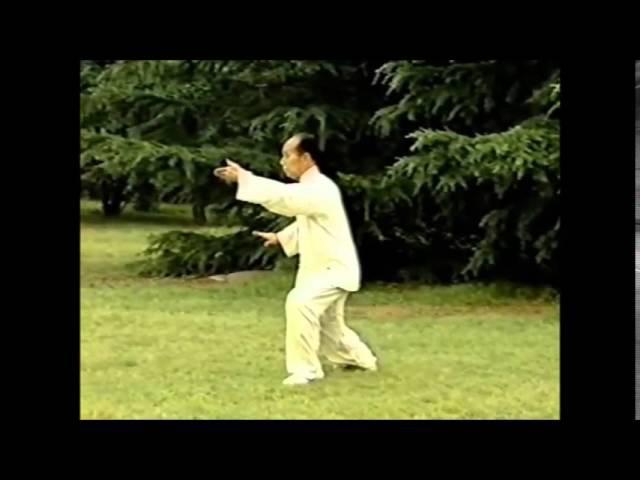 108 форм Тайцзицюань стиль Ян Мастер Лю Гаомин