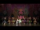 Щелкунчик Балет Мариинского театра