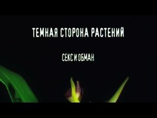 Тёмная сторона растений  Секс и обман (2013)
