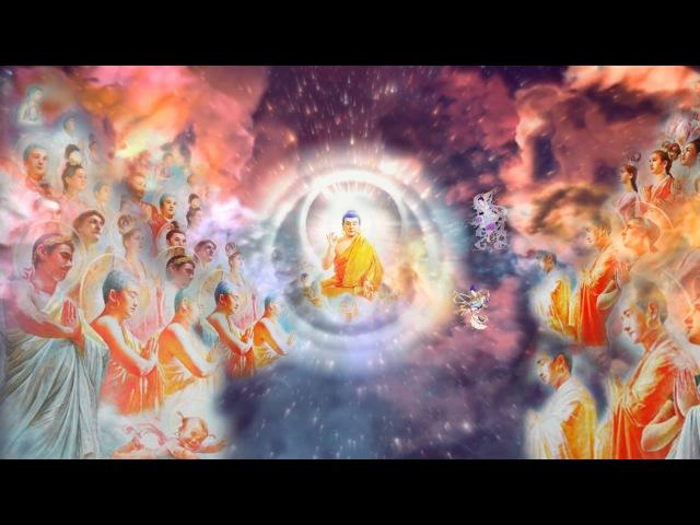 Фалунь Дафа Фалуньгун Древние знания открыли для всех Цигун Путь возвращения к Истоку