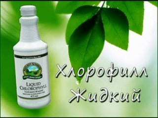 Жидкий Хлорофилл (Liqiud Chlorophyll) - жемчужина NSP.